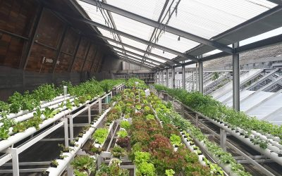 CA Greenhouse Structures